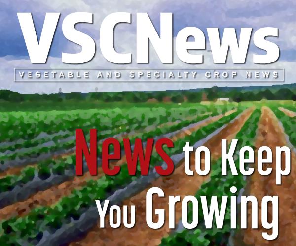 VSCNews